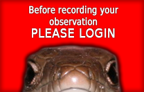 Please register before recording your observations